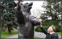 """Wojtek el oso héroe de la """"GM el cafe de la historia"""