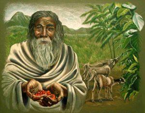 Kaldi, el pastor que según la leyenda, descubrió el café