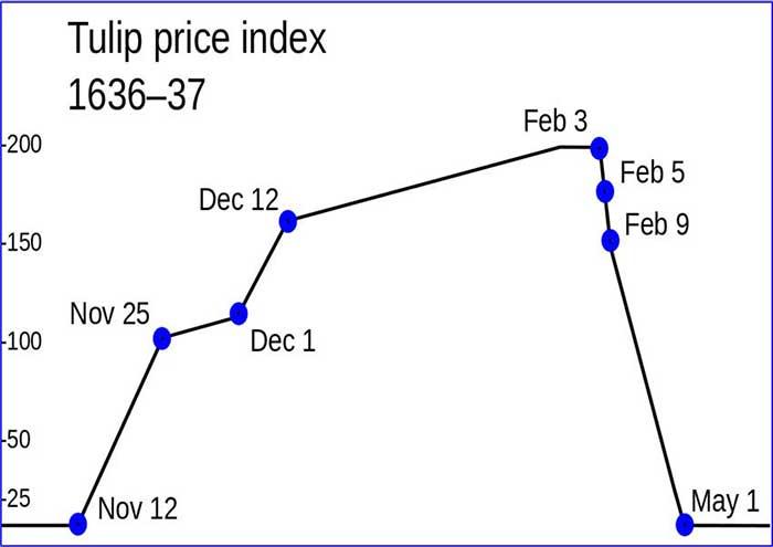 Evolución y descalabro de los precios del tulipán