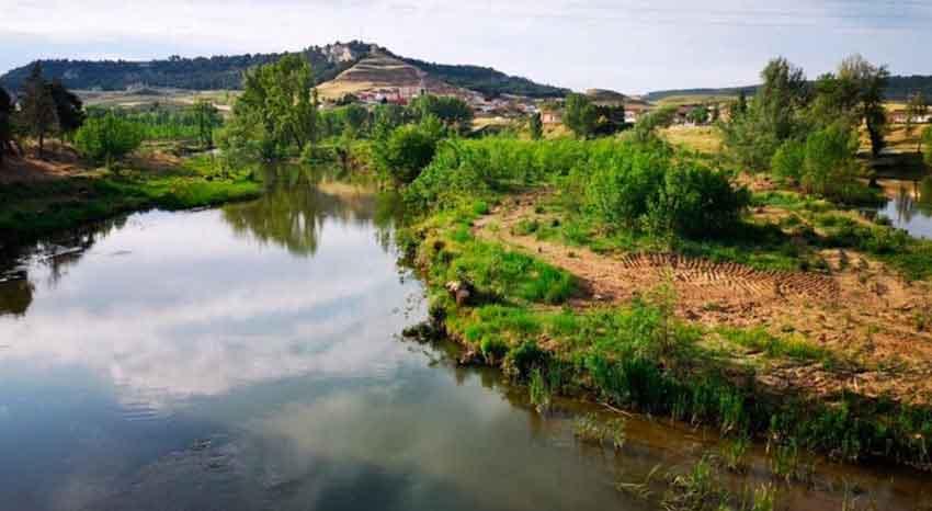 Dichos, frases, citas, refranes, aforismos y proverbios de Palencia y su provincia