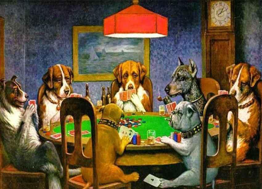 Refranes de perros